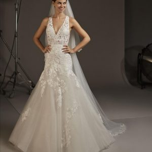 Pronovias Fay Wedding Dress